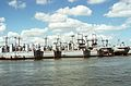 Amphibious ships mothballed on Elizabeth River in 1994.jpg