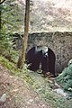 Ancien chemin de fer, remblais du Catus 1- nord.jpg
