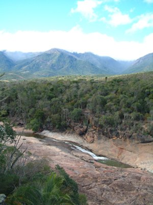 Andohahela National Park - A view over the transitional forest of Andohahela National Park