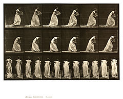 Animal locomotion. Plate 199 (Boston Public Library).jpg
