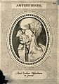 Antisthenes. Line engraving. Wellcome V0000168.jpg