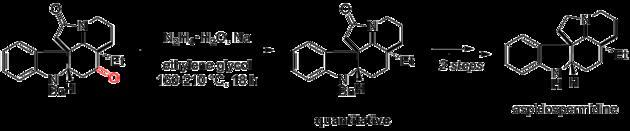 Scheme 18. Synthese von Aspidospermidin