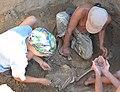 Archeological Excavations Late Scythians and Sarmatians Chervoniy Mayak July 2017 16 (YDS 1124 2).jpg