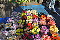 Artificial Flower Sellers.JPG