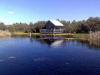 Atwell, Western Australia - Wetland in Harvest lakes, Atwell