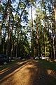 Automobiliai prie Gėlos ežero - panoramio.jpg
