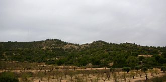 42nd Division (Spain) - The desolate Auts Hills, limit of the republican advance in the northern zone, where a great number of men of the 42nd Division perished.