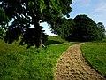 Avebury Henge - geograph.org.uk - 841112.jpg