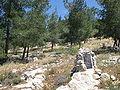 Avshalom's Cave IMG 0976.JPG