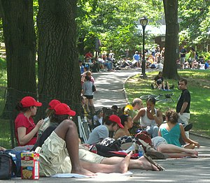 Shakespeare in the Park (New York City) - Awaiting tickets