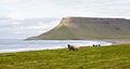 Búlandshöfði, Vesturland, Islandia, 2014-08-14, DD 083.JPG