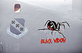 B-1B Black Widow Nose Art.jpeg