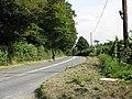 B4203 At Camp Lane - geograph.org.uk - 1482798.jpg