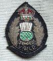 BADGE - Scotland - Scottish National Senior police officer 1 (7980569178).jpg