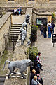 Baboon Tower of London 210913.jpg