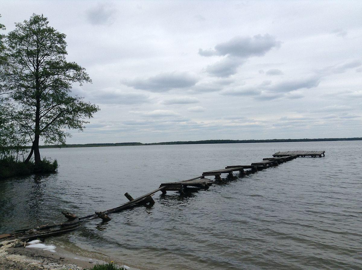 озеро с толстолобиком возле шалаша ленина