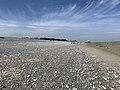 Baie Somme Hourdel - Cayeux-sur-Mer (FR80) - 2021-05-29 - 33.jpg