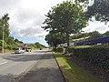Bangor, UK - panoramio (9).jpg