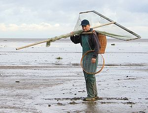 Banks, Lancashire - One of the few traditional shrimpers from Banks