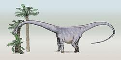 definition of barosaurus