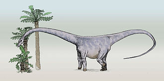 1890 in paleontology - Barosaurus.