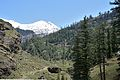 Beas Valley - Kothi - Kullu 2014-05-10 2296.JPG
