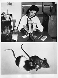 Beatrice Mintz (b. 1921) (6891505741).jpg