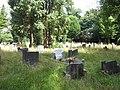 Begraafplaats Soerenseweg (31077432126).jpg