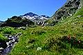 Beim Grossen St. Bernhard Pass.jpg
