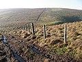 Below Willowgrain Hill - geograph.org.uk - 684485.jpg