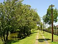 Benavente - Portugal (253507853).jpg