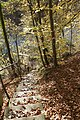 Bern Canton - panoramio (266).jpg