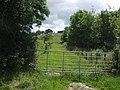 Beside Leigh Wood - geograph.org.uk - 489928.jpg