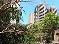 Beyrouth Mansion 218.jpg