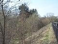 Bezhitskiy rayon, Bryansk, Bryanskaya oblast', Russia - panoramio (221).jpg