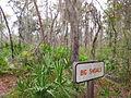 Big Shoals Sign (4049471147).jpg