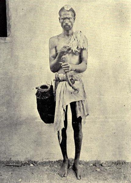 File:Billava toddy tapper 1900s.jpg