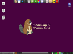 BionicPup.png