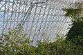 Biosphere 2015 01 18 0050.jpg