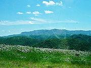 Black Mountain (Kentucky)
