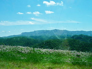 Black Mountain (Kentucky).jpg