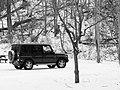 Black On White German (229926793).jpeg