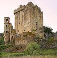 Blarney Castle (14811428023).jpg