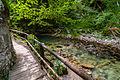 Blejski Vintgar (9783800253).jpg
