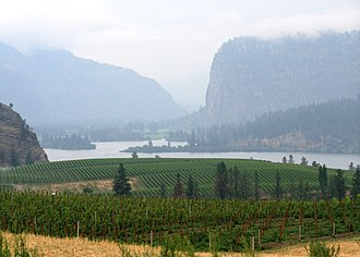 Vintners Quality Alliance - Vineyard in the Okanagan regional appellation of British Columbia.