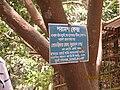 Board advertisement in Bengali.jpg