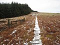 Boardwalk on the Pennine Way at Ogre Hill - geograph.org.uk - 645742.jpg
