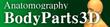BodyParts3D Anatomography.png