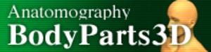 Anatomography - Anatomography logo.