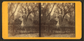 Bonaventure Cemetery, from Robert N. Dennis collection of stereoscopic views 3.png